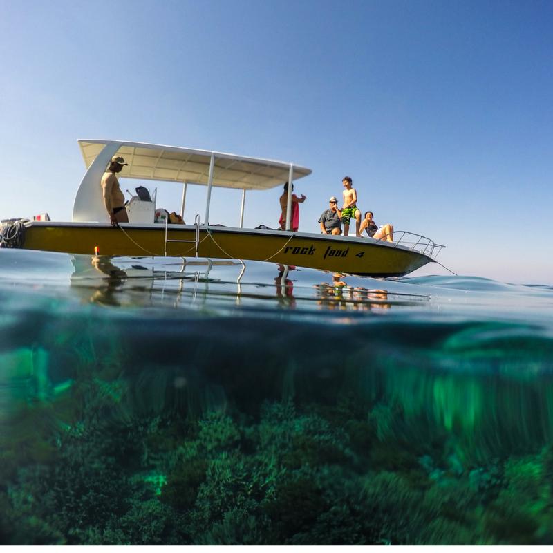 Snorkeling_Nusa Lembongan Image Source- @coastal_eclipse