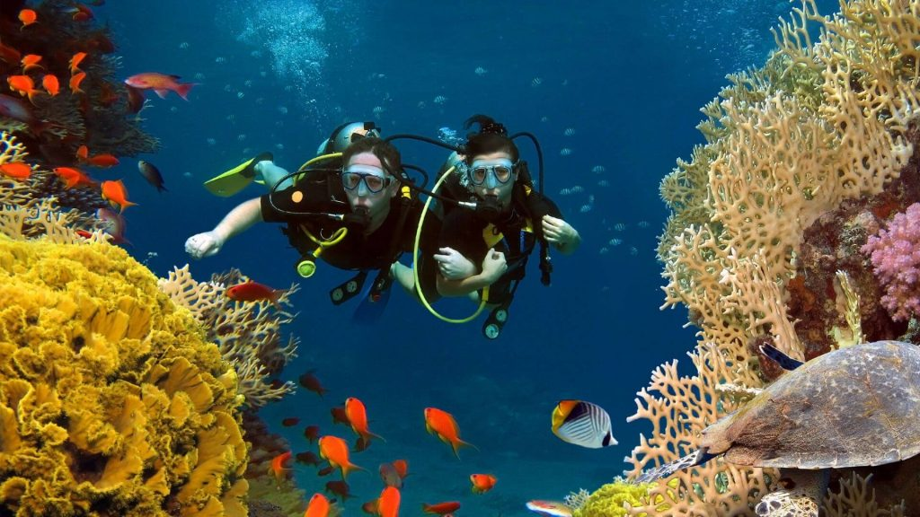 Best Dive Sites Around Nusa Lembongan Scuba Divers