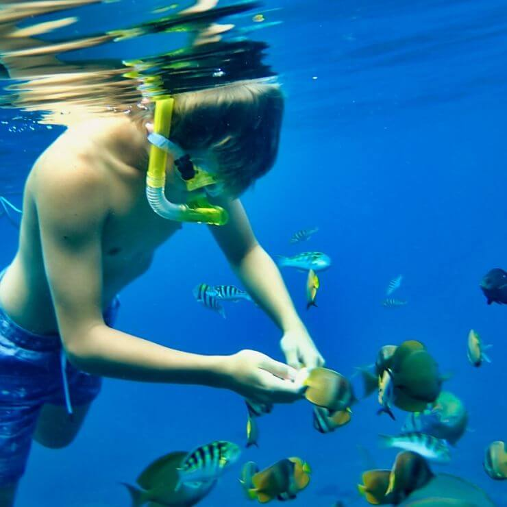 SNORKELLING IS ONE OF THE Top 10 Things To Do and See on Nusa Lembongan
