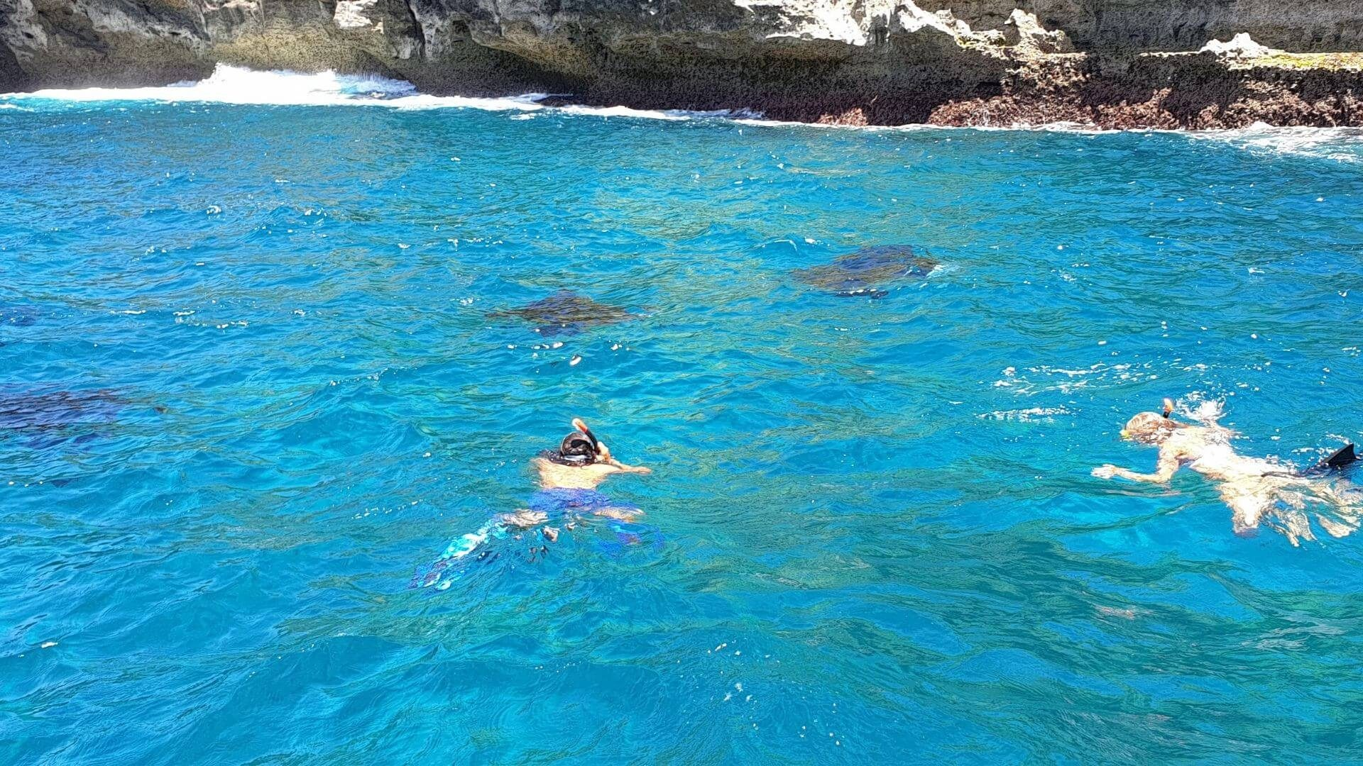 DISCOVER THE BEST DIVE SITES AT NUSA LEMBONGAN AND NUSA PENIDA, BALI - SWIMMING WITH THE MANTA RAYS